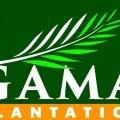 Asisten Maintenance Pabrik Kelapa Sawit-Tembilahan (Batam) PT Gama Plantation