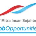 Mitra Insan Sejahtera, PT IT Programmer Staff k