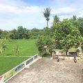 Tanah: Sendangadi DI Yogyakarta | Rp 6,500,000