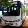 Dijual Bus Mercy Mbo700