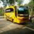 Bus Pariwisata medium canter ps136 seat 31 siap pakai